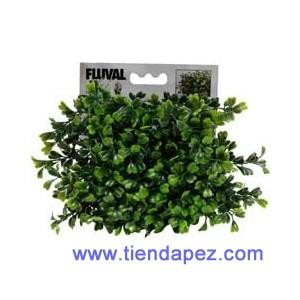 Fluval Chi Planta Boxwood Ref 12191