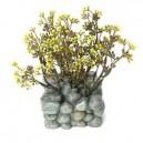 Fluval Chi Base Para Piedras Y Plantas Ref 12195